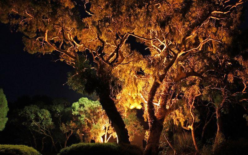 I cavi interrati per limpianto di illuminazione di un giardino l
